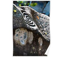 Altavista Petroglyphs Poster