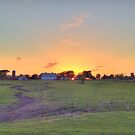 Sunset Farm by Donald Salsbury