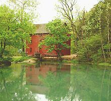 Alley Spring, Missouri by BayleeCook