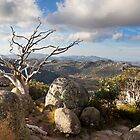 Mt Buffalo by Camron Wilson