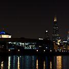 John G. Shedd Aquarium - Chicago by eegibson
