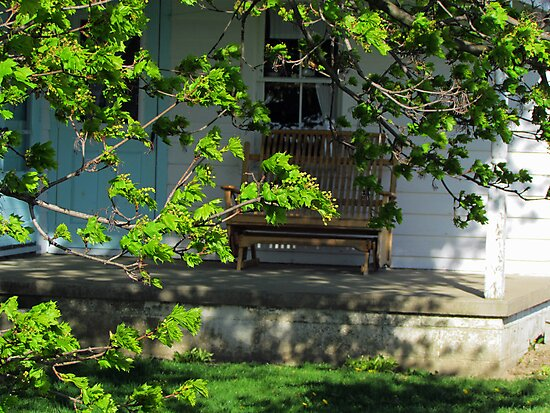 Amish Porch Through Blooming Branches by Nevermind the Camera Photography