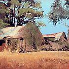 Overgrown Ruins of Tintinhull Inn, Moonbi, NSW, Australia. (2011) by Martin Lomé