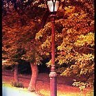 Lamppost by PhilM031