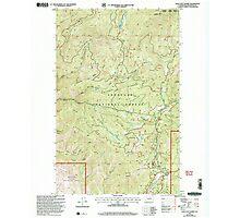 USGS Topo Map Washington State WA Loup Loup Summit 242081 2001 24000 Photographic Print