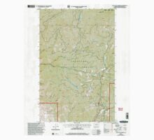 USGS Topo Map Washington State WA Loup Loup Summit 242081 2001 24000 Kids Tee