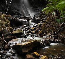 Stanley Park Falls. by Simon Penrose