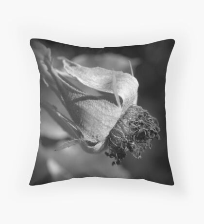 Life Well Used. Throw Pillow