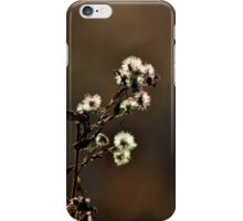 The Soft Light of a Late Afternoon iPhone Case/Skin