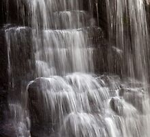 Soco Cascade by Dawn Crouse