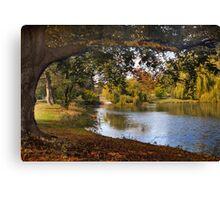 Autumn at Woodlawn Canvas Print