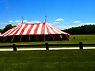 """Drive-by Shooting #15 - The Circus in in Town! by Christine """"Xine"""" Segalas"""