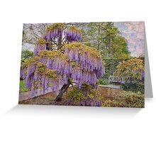 Wisteria Tree Greeting Card