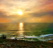 Torrey Pines Beach by Dawn Serkin