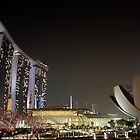Singapore at Night by Fincher Trist