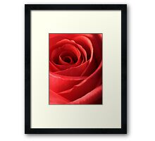 Romantic Red Rose Framed Print
