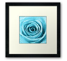 Turquoise Rose with Water Droplets Framed Print