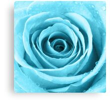 Turquoise Rose with Water Droplets Canvas Print