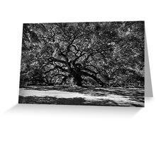 Angel Oak 001 BW Greeting Card