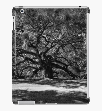 Angel Oak 001 BW iPad Case/Skin