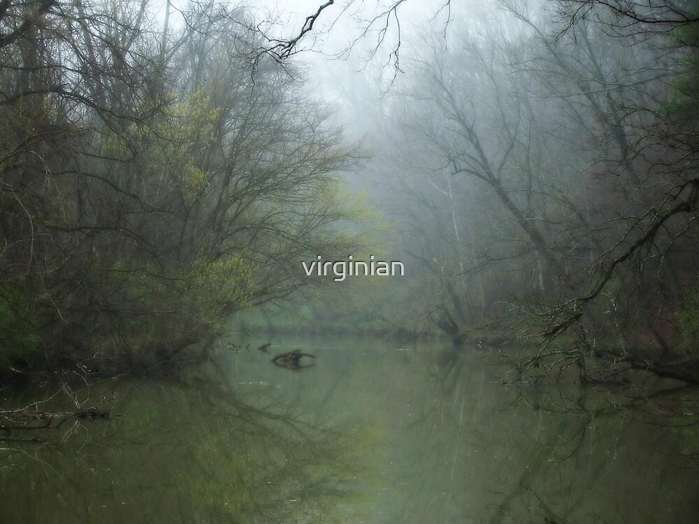 Foggy Tinker Creek~ by virginian