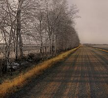Country Road by Keri Harrish
