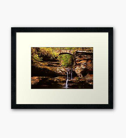 Stream of Life Framed Print
