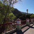 The Bridge - El Puente by Bernhard Matejka