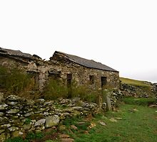 abandoned welsh long house by Cat Edwards