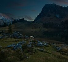 The Night Awakes by ArsSilentium