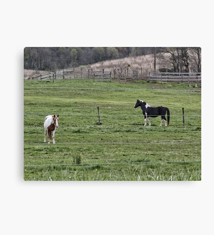 A good day to stand around and do nothing Canvas Print