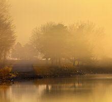 Dawns Fog by Richard Lee