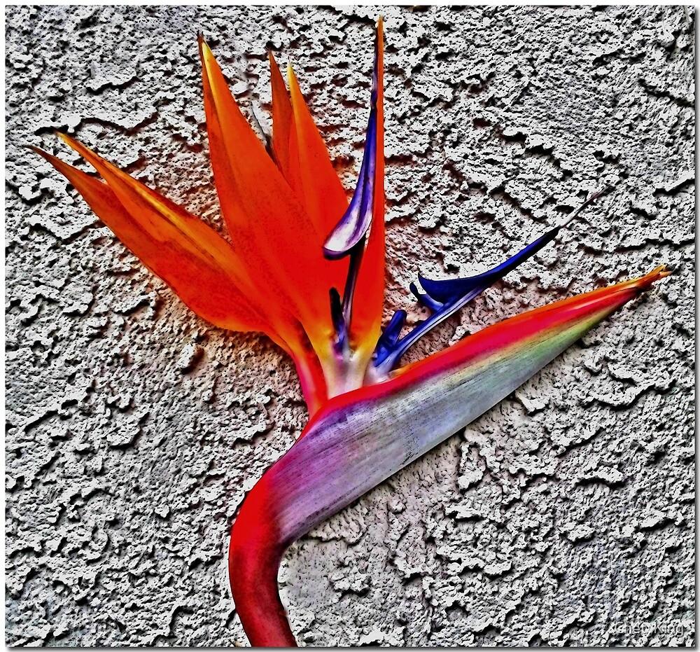 Bye Birdie by Chet  King
