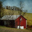 Another Barn, another day by vigor