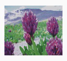 Tundra Flowers One Piece - Short Sleeve