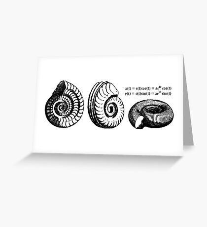 Math Spiral Shells Greeting Card