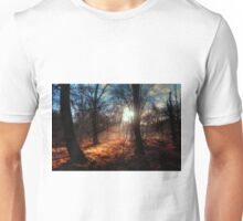 Autumn in Epping Forest Unisex T-Shirt