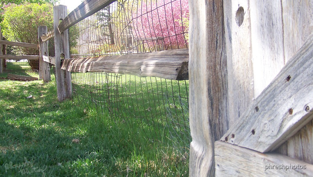once upon a fence by phreshphotos