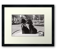 Guide Dog Graduation Framed Print