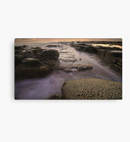Watery Pathway Canvas Print