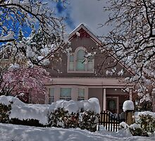 Mauve In The Snow by Diana Graves Photography