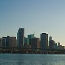 Downtown Miami Across Biscayne Bay by Henry Plumley