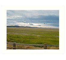 flood plains Art Print