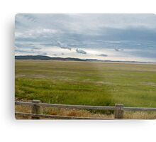 flood plains Metal Print