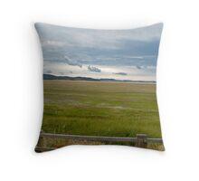flood plains Throw Pillow
