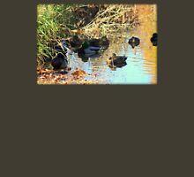 Close Up of Mallard Ducks in Pond Unisex T-Shirt