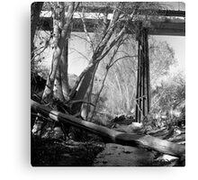 Creek Walk Canvas Print