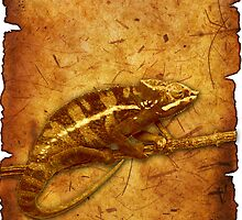 gecko by sherrybear