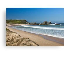 Camel Rock and surf beach Canvas Print