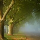 The fair luminous mist ... by Rosalie Dale
